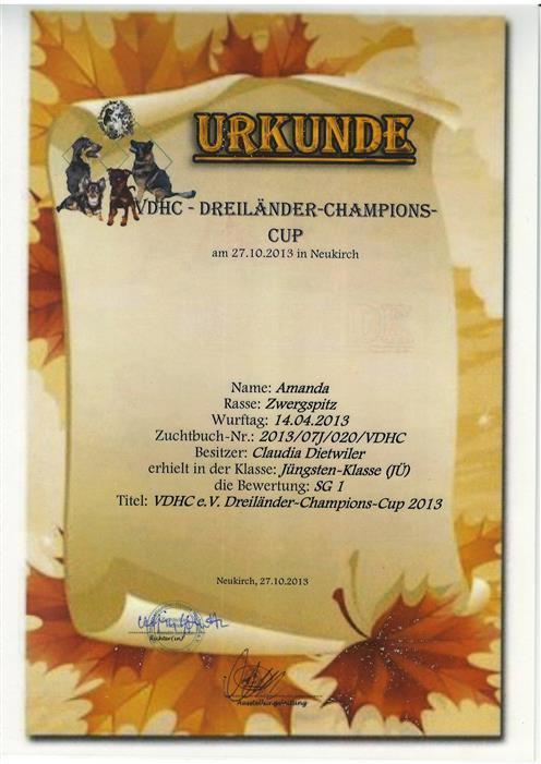 2013-10-27 amanda-04